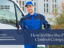 Hire the Pest Control Company