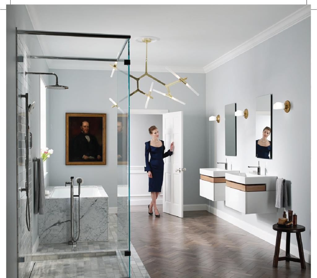 Titanium Luxury Bathroom
